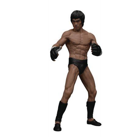 Bruce Lee Premium Figure Martial Artist Version 1/12 Scale